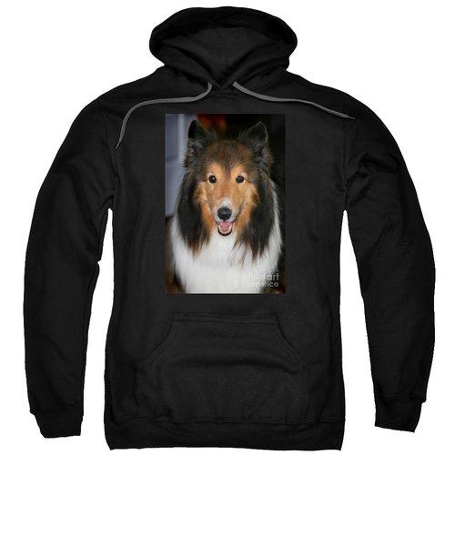 A Dog Named Beau Sweatshirt