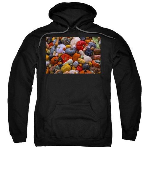 A Great Harvest Sweatshirt