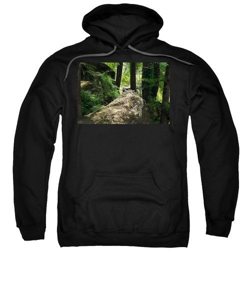Sweatshirt featuring the photograph A Pair Of Collared Doves by Kim Pate