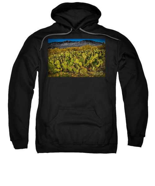 Sweatshirt featuring the photograph A Prickly Pear View by Mark Myhaver