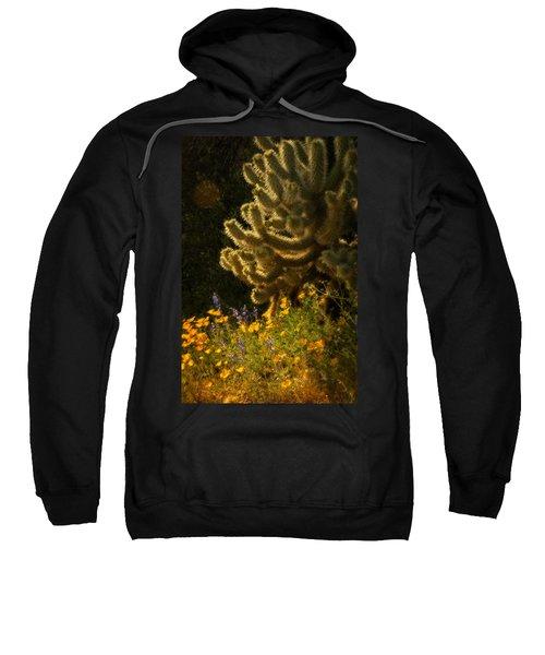 A Southwestern Spring  Sweatshirt