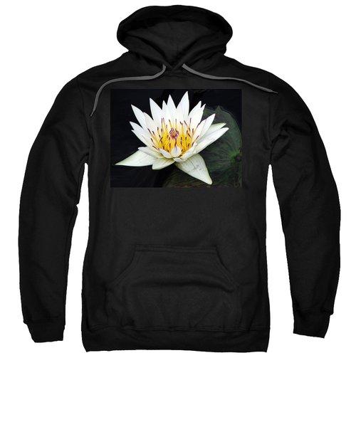 Botanical Beauty Sweatshirt