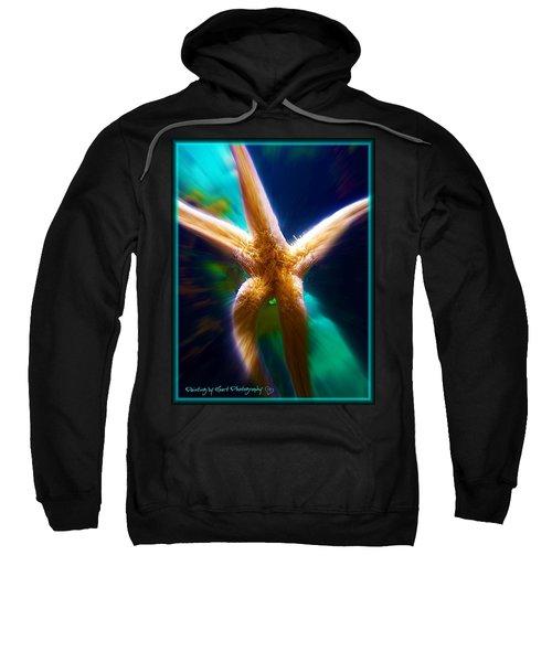 A Star Is Born Sweatshirt