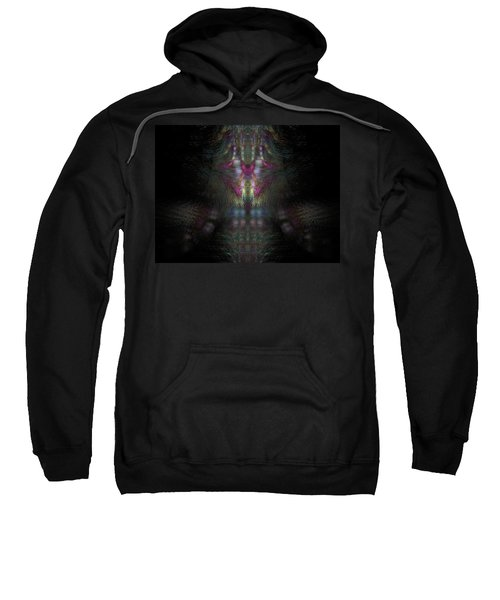 Abstract Artwork 14 Sweatshirt