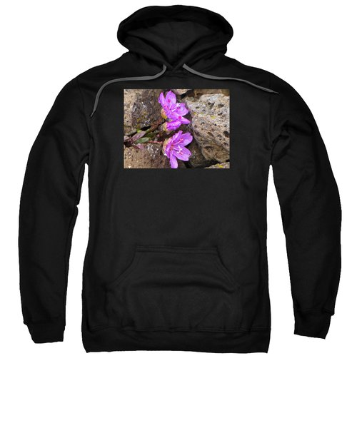 Alaskan Wildflower Sweatshirt