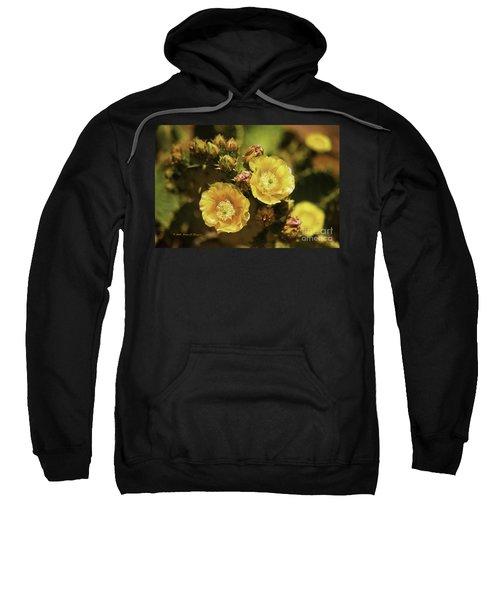 'albispina' Cactus #3 Sweatshirt