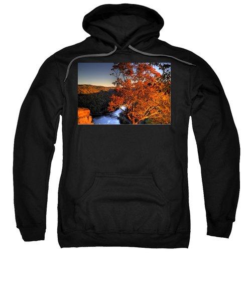 Amazing Tree At Overlook Sweatshirt by Jonny D