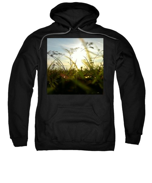 Ant's Eye View Sweatshirt
