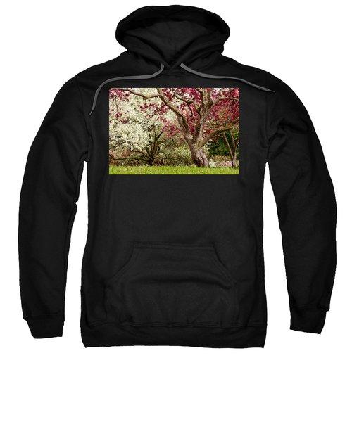 Apple Blossom Colors Sweatshirt by Joe Mamer