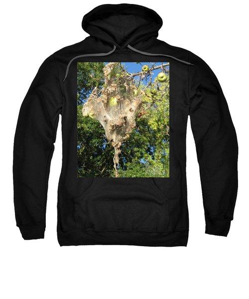 Apple Trap Sweatshirt