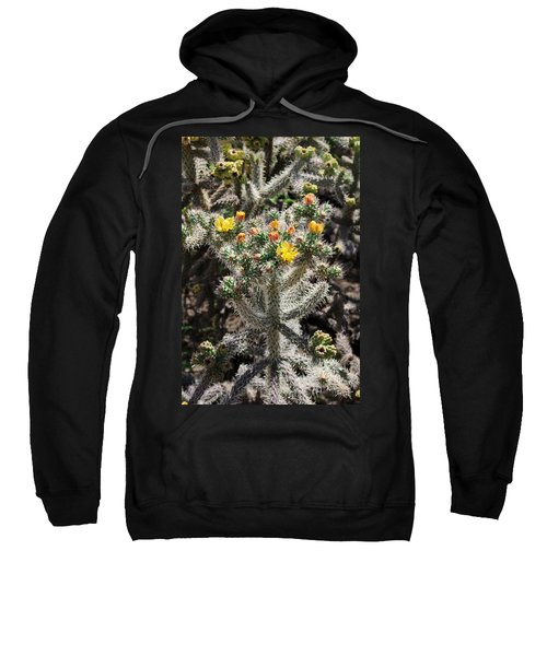 Arizona Cactus Sweatshirt