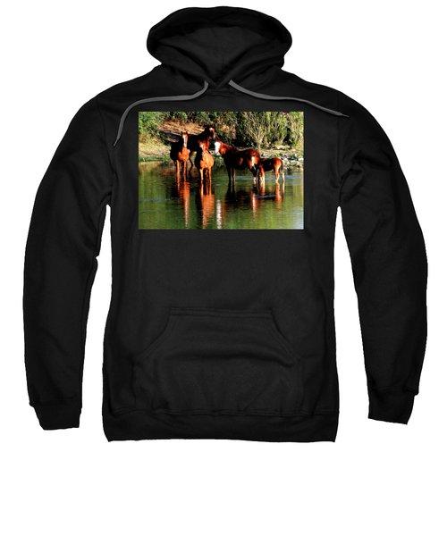 Arizona Wild Horses Sweatshirt