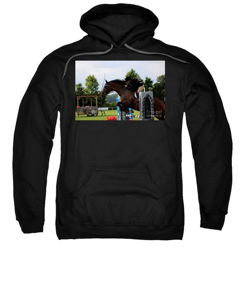 At-s-jumper117 Sweatshirt