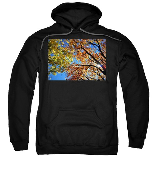 Autumn Afternoon Sweatshirt