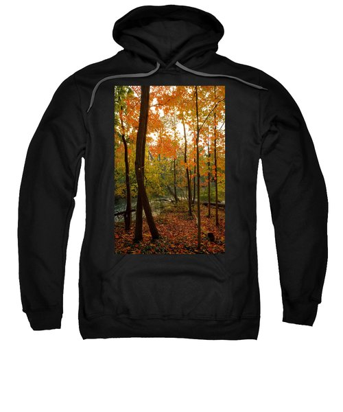Autumn Colors Sweatshirt