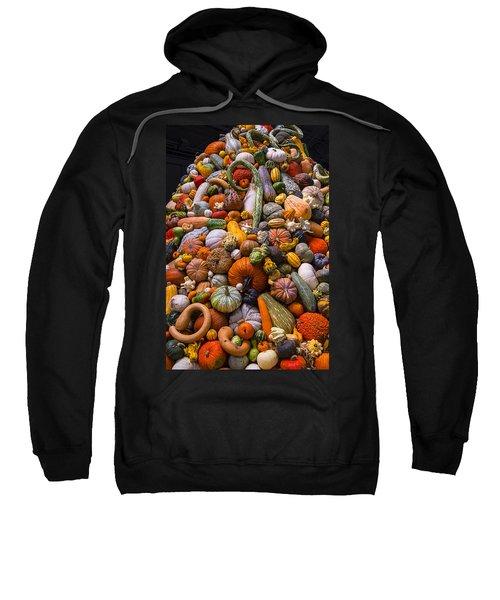 Autumn Harvest Pile Sweatshirt