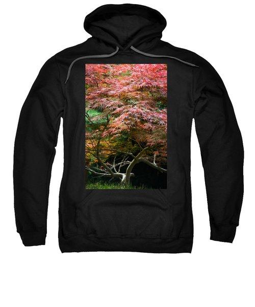 Autumn Is Here Sweatshirt