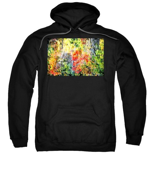 Autumn Leaves Reflected In Pond Surface Sweatshirt