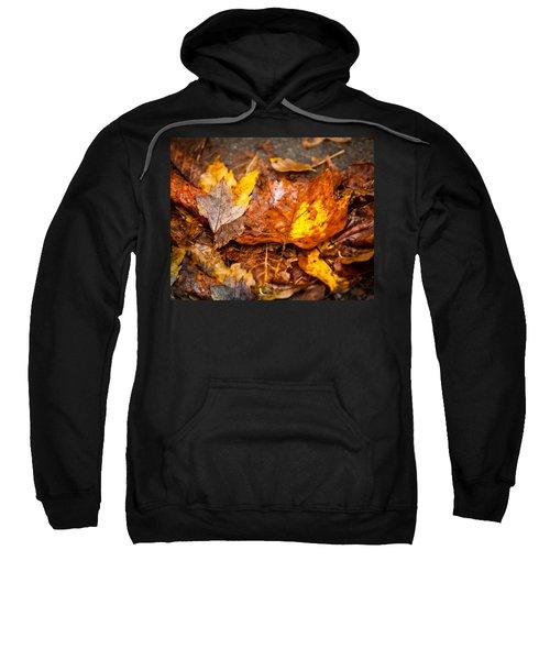 Autumn Pile Sweatshirt