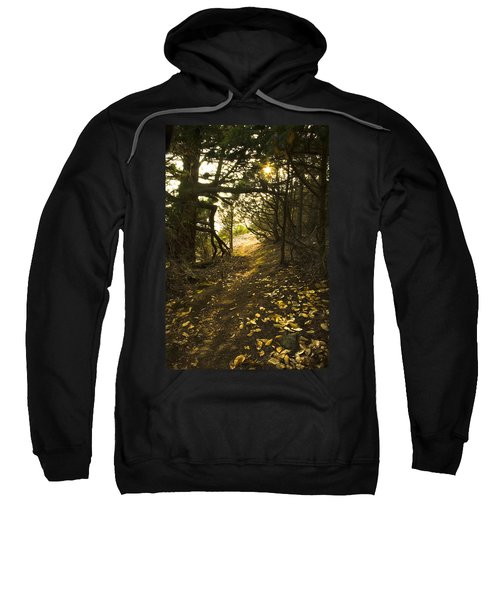 Sweatshirt featuring the photograph Autumn Trail In Woods by Yulia Kazansky