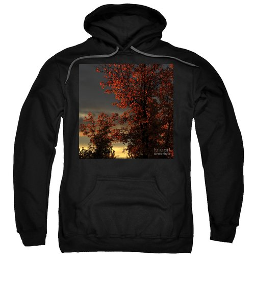 Autumn's First Light Sweatshirt