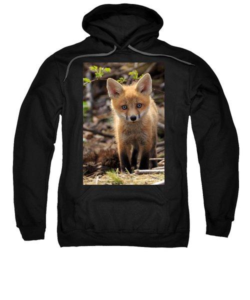 Baby In The Wild Sweatshirt