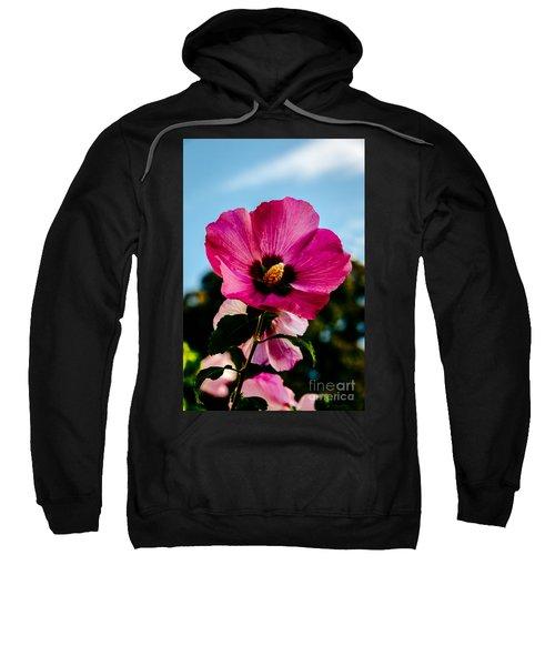 Baby Pink Hollyhock Sweatshirt