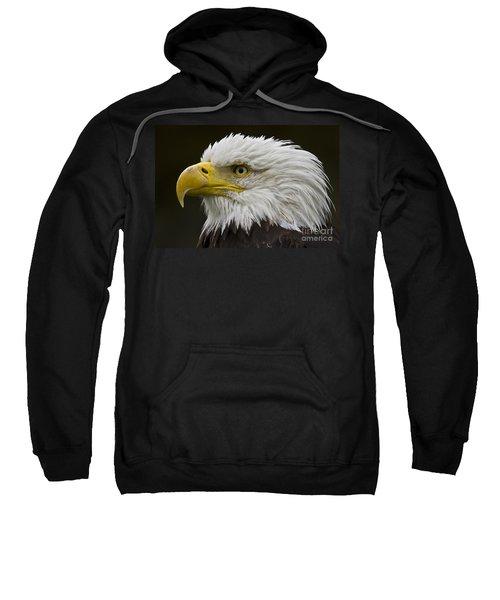 Bald Eagle - 7 Sweatshirt