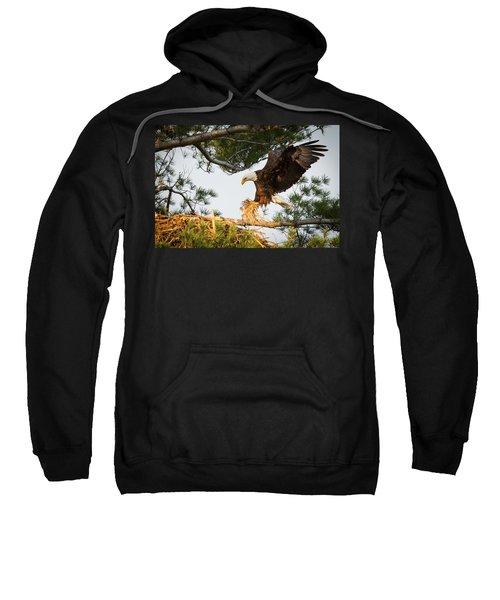 Bald Eagle Building Nest Sweatshirt