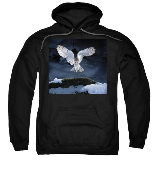 Barn Owl Landing Sweatshirt
