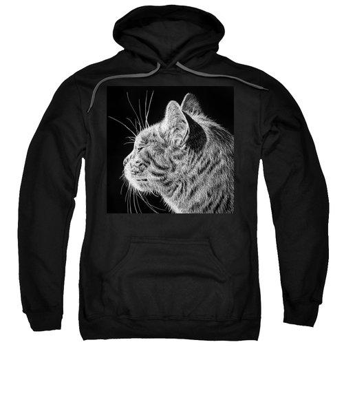 Basking II Sweatshirt