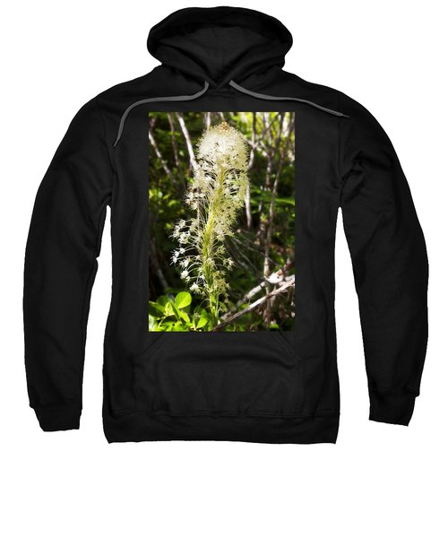Bear Grass No 3 Sweatshirt