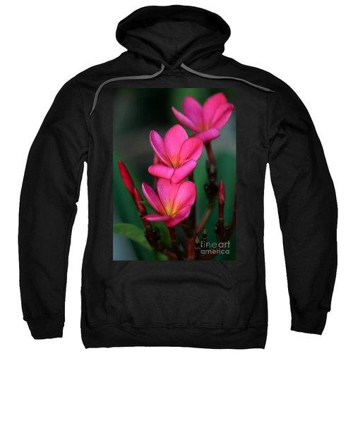 Beautiful Red Plumeria Sweatshirt