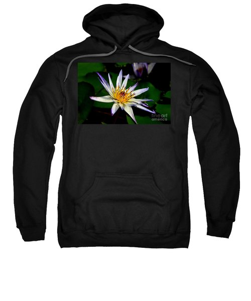 Beautiful Violet White And Yellow Water Lily Flower Sweatshirt