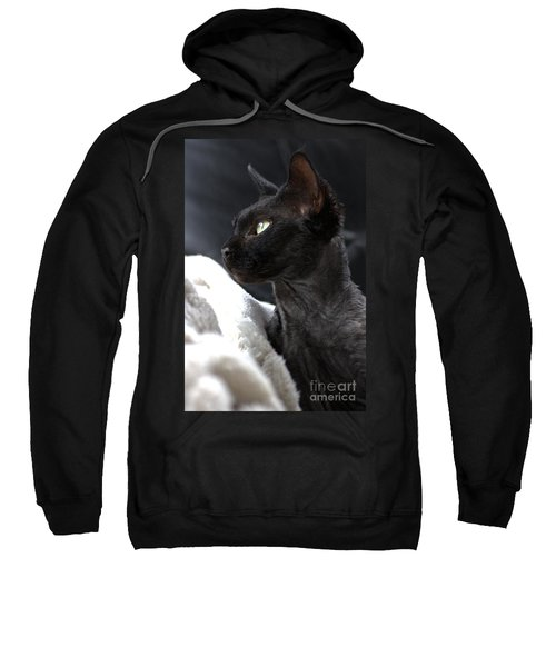 Beauty Of The Rex Cat Sweatshirt