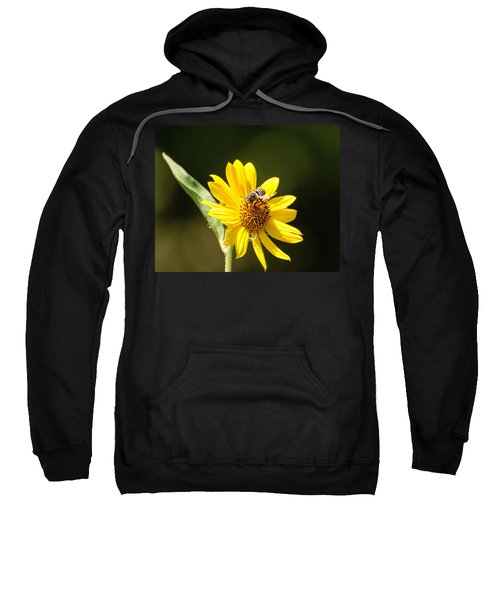 Bee Flower Sweatshirt