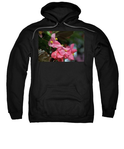 Begonia Beauty Sweatshirt