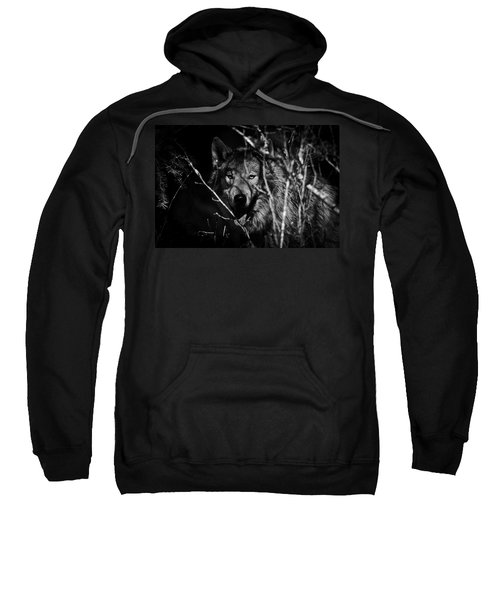 Beware The Woods Sweatshirt