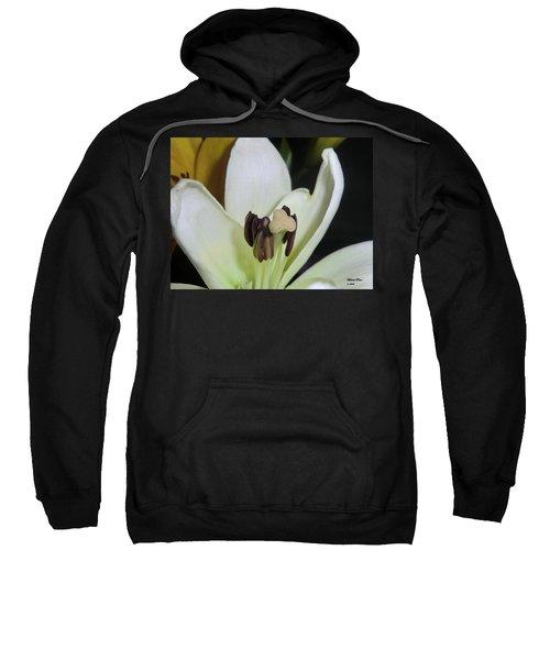 Beyond Perfection Sweatshirt