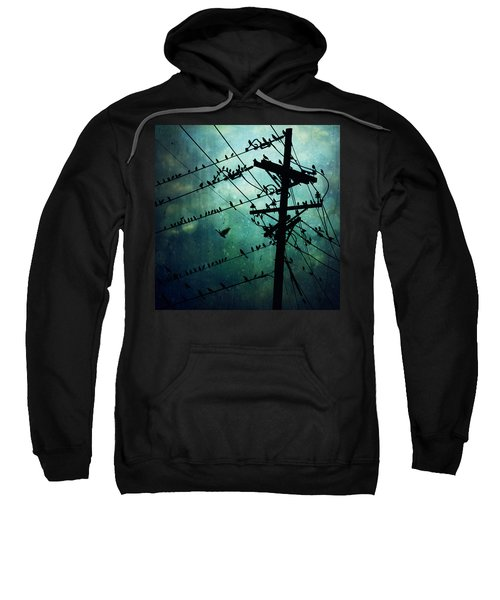 Bird City Sweatshirt by Trish Mistric