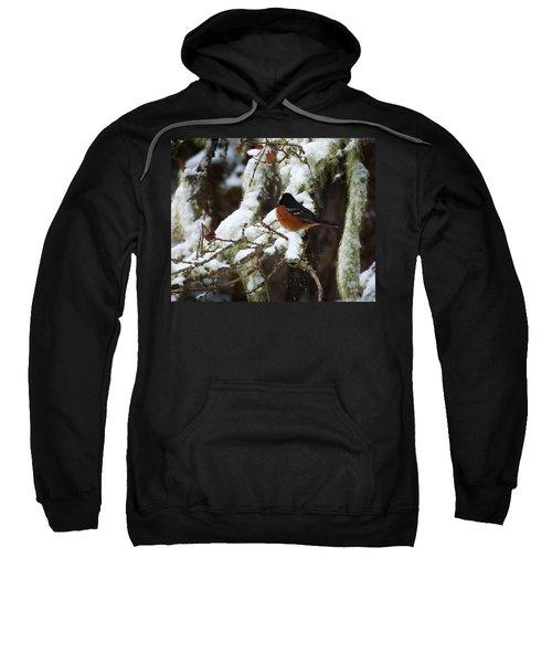 Bird In Snow Sweatshirt