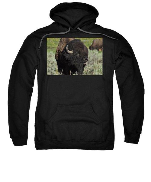 Bison Sweatshirt