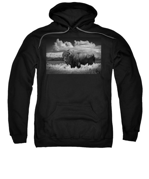 Black And White Photograph Of An American Buffalo Sweatshirt