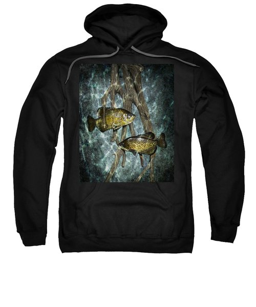 Black Crappies A Fish Image No 0143 Blue Version Sweatshirt