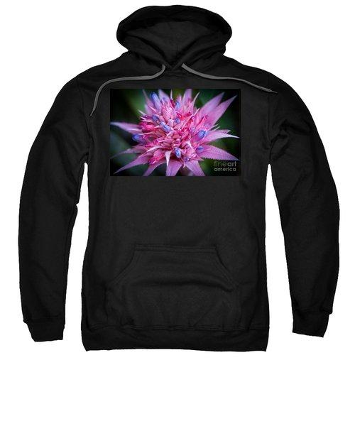 Blooming Bromeliad Sweatshirt