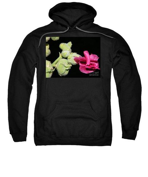 Blooming Pink Hollyhock Sweatshirt