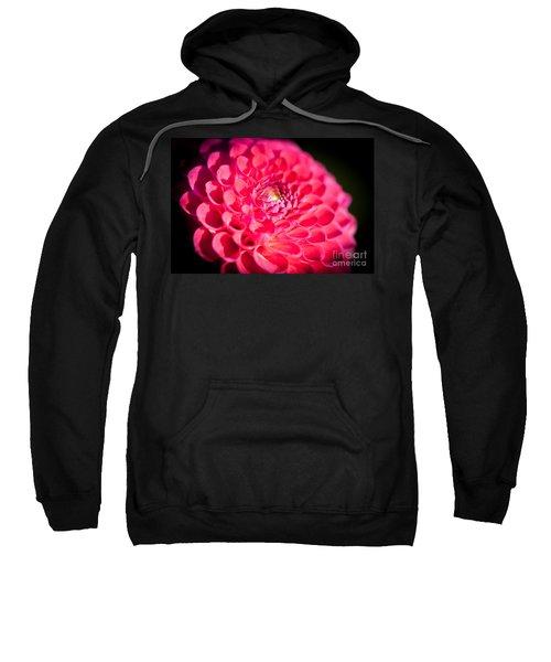 Blooming Red Flower Sweatshirt
