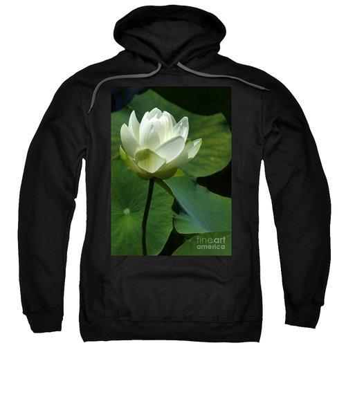 Blooming White Lotus Sweatshirt