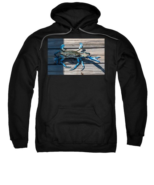 Blue Crab Pincher Sweatshirt