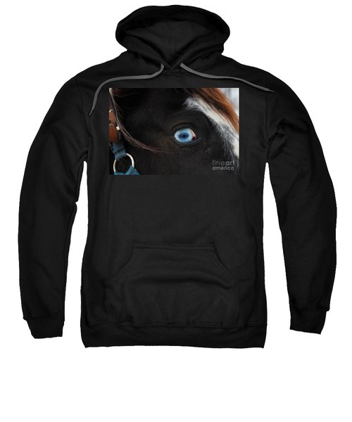 Blue Eyed Horse Sweatshirt